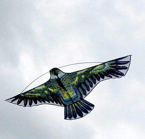 Отпугиватель птиц динамический КАНЮК